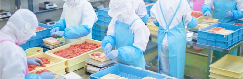 食品加工の現場になくてはならない存在!洗浄用ロールブラシの役割や種類を解説